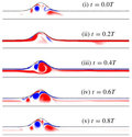 Dynamics of pulsatile flow through model abdominal aortic aneurysms